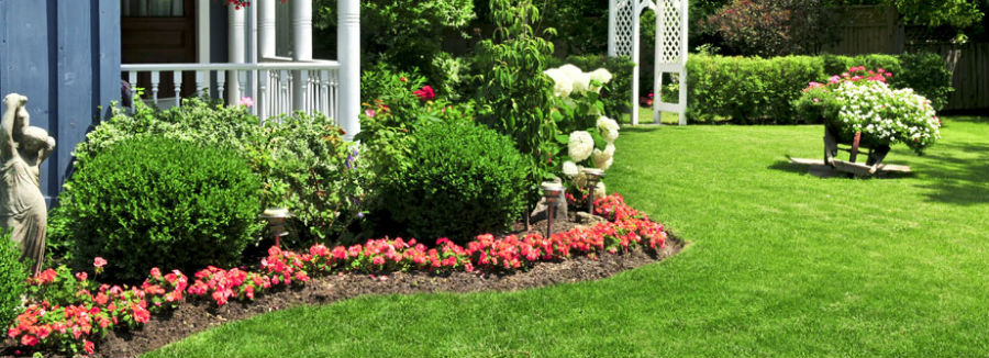 landscaping company